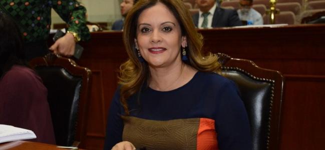 Fernanda Rivera pide respeto a los tiempos electorales.