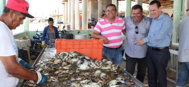 Buen inicio de la Temporada de Pesca de Jaiba