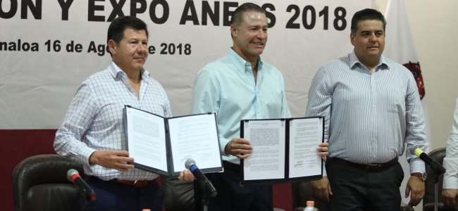 Mazatlán será la sede de la XXXII Convención de la ANEAS